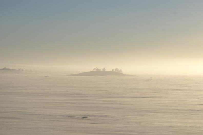 Island in the Snowdesert